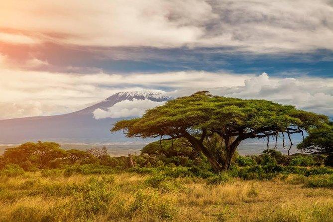 6 Days Kenya Safari