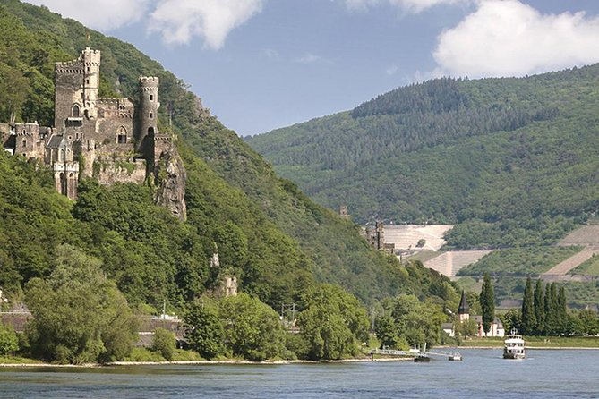 Heidelberg and Rhine Valley Day Trip from Frankfurt Incl Wine Tasting and Dinner photo 16
