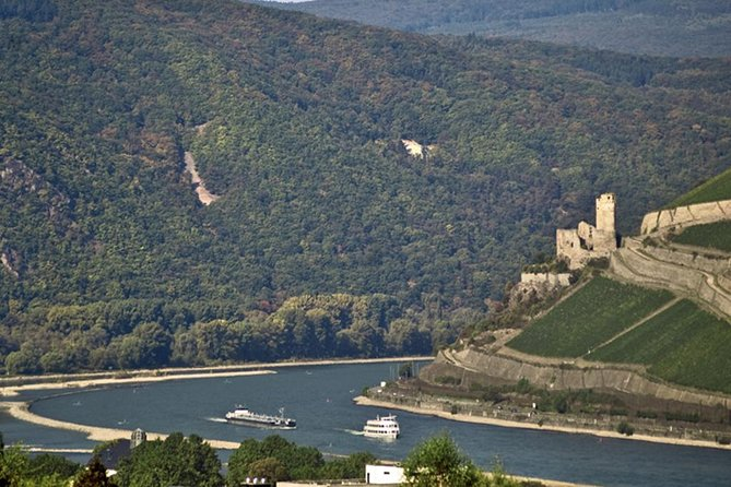 Heidelberg and Rhine Valley Day Trip from Frankfurt Incl Wine Tasting and Dinner photo 15