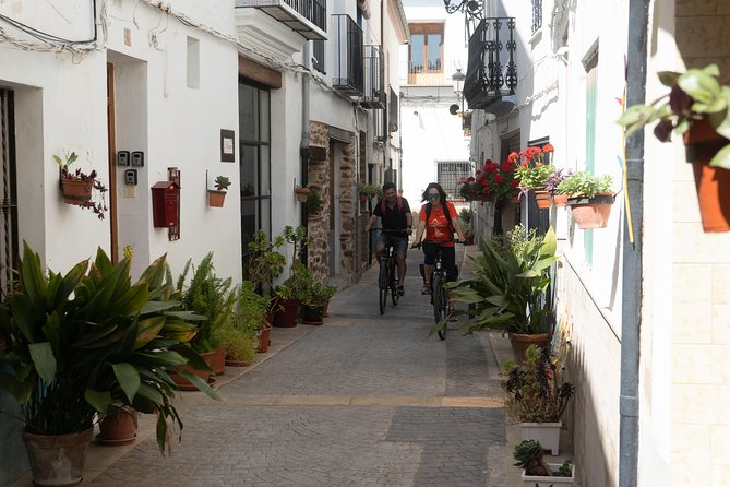 Valencia Mediterranean bike tour in 3 stages