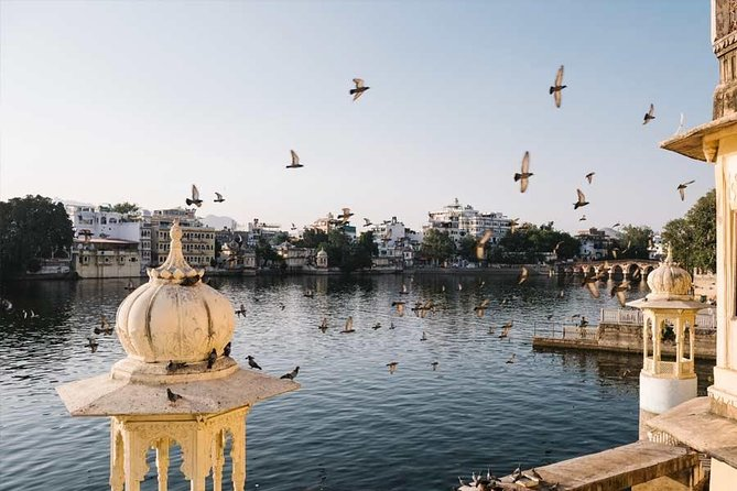 Udaipur Local Full Day Sightseeing photo 6