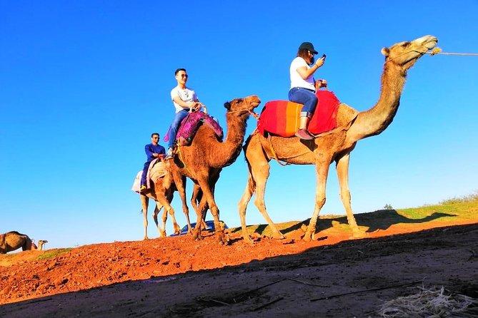 Day Trip: Desert Agafay & Atlas Mountains & Waterfalls & Berber Villages