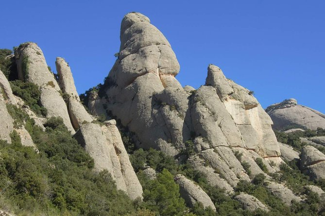 Full-day Guided Rock Climbing Trip in Montserrat, Barcelona photo 6