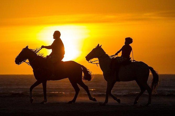 Horse Ride in Agadir