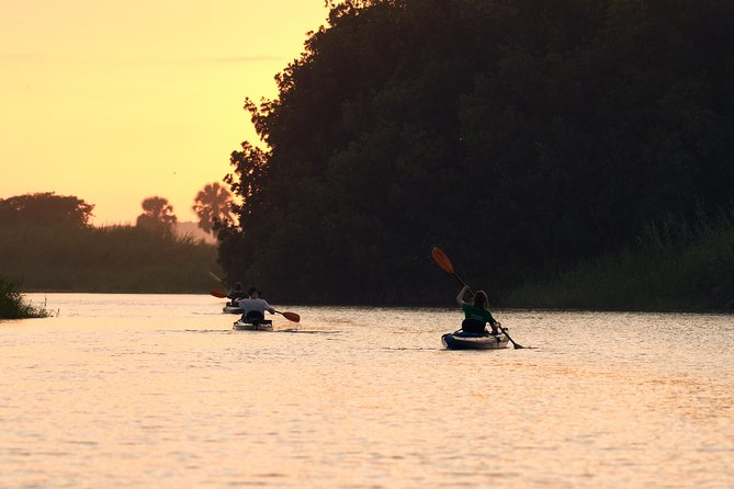 Bio Sunset Biolouminescent Kayaking Tour
