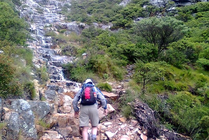 Hiking and Trekking on Table Mountain