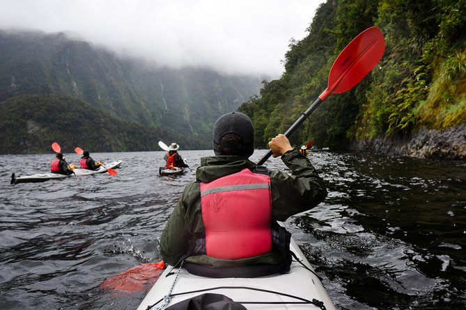 Doubtful Sound Kayak