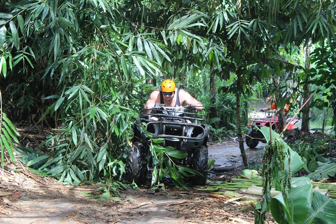 Bali Quad Bike Adventure and Ubud Tour