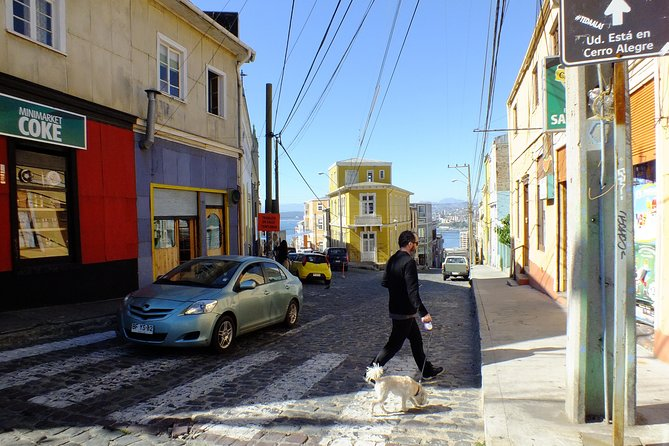 San Antonio Port Cruise Tour to Valparaiso & Casablanca Valley from San Antonio photo 4