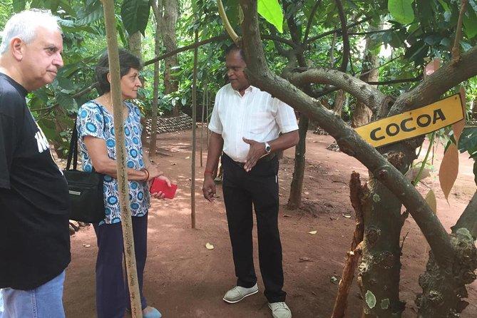 Kandy Excursion