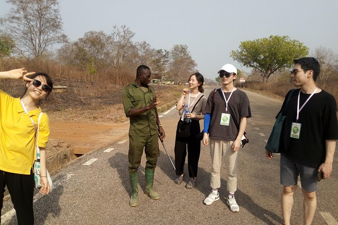 Day Trip from tamale-Mole National