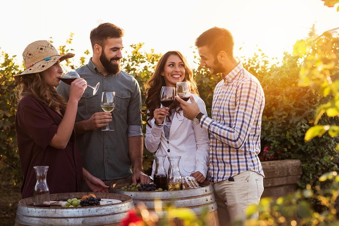 Wine And Food Pairing Tour To Brda Region