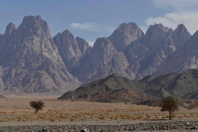 Private VIP Desert Safari (LUXURY)