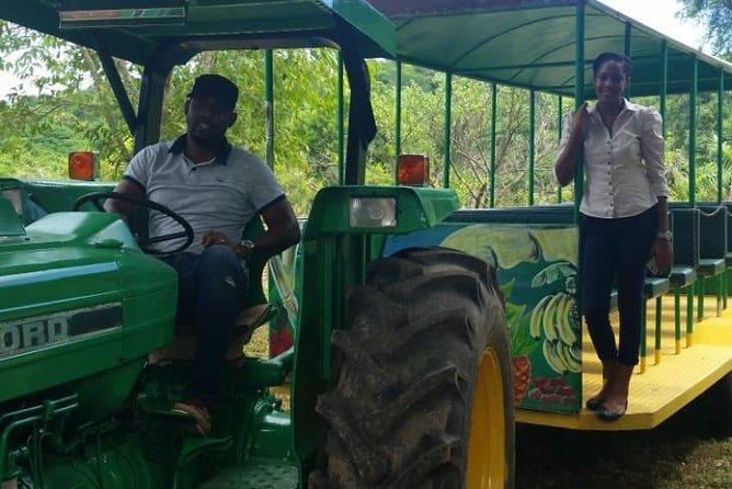 Plantation River Tour: Farm Tour, Rafting and Falmouth Highlight