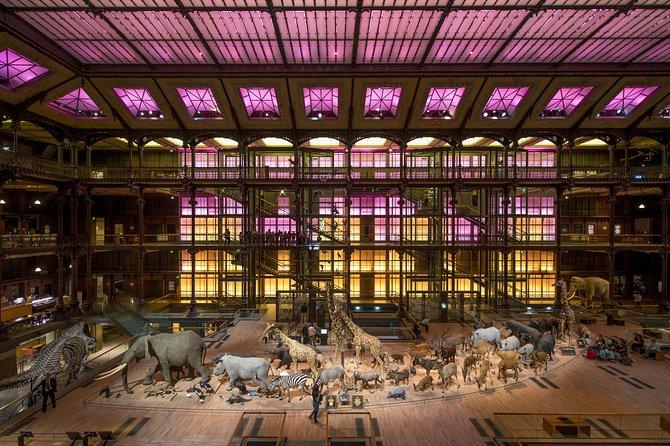 Skip the Line: Grande Galerie de l'Evolution Admission Ticket