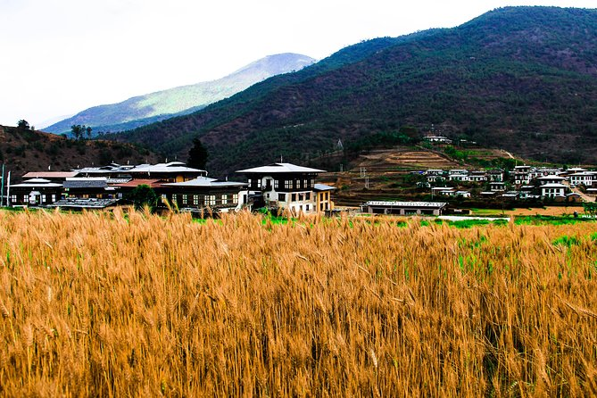 8-Day The Happiness Bhutan Cultural Tour