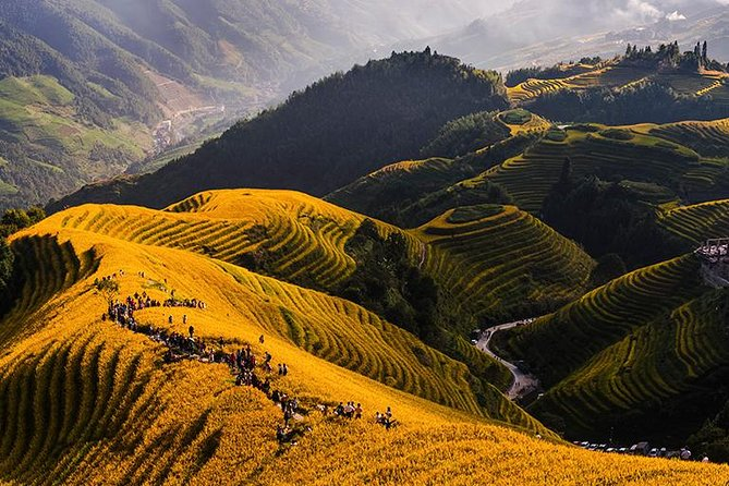 Longji Rice Terrace and Minority Private Day Tour photo 10