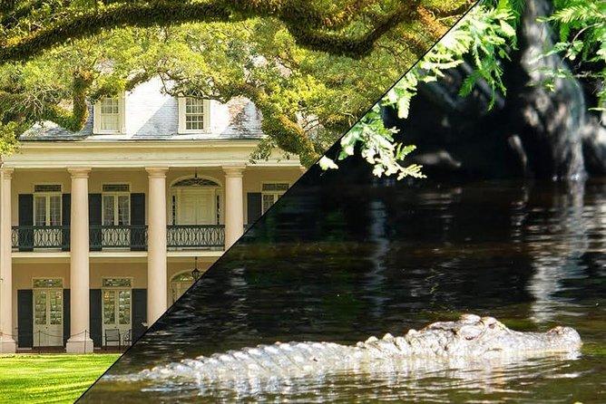 Volle dag Oak Alley Plantation en Swamp Boat Tour vanuit New Orleans