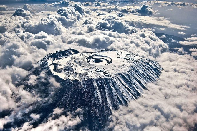 Mount Kilimanjaro Day Tour