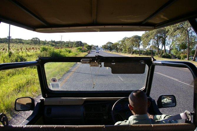 3 Day Budget Kruger National Park Safari