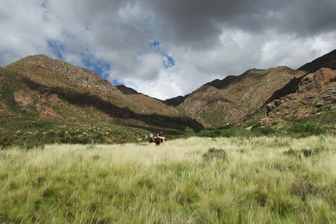 Horseback expedition to The Andes, 3 days photo 9
