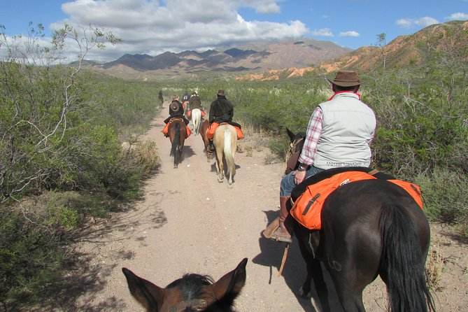 Horseback expedition to The Andes, 3 days photo 7