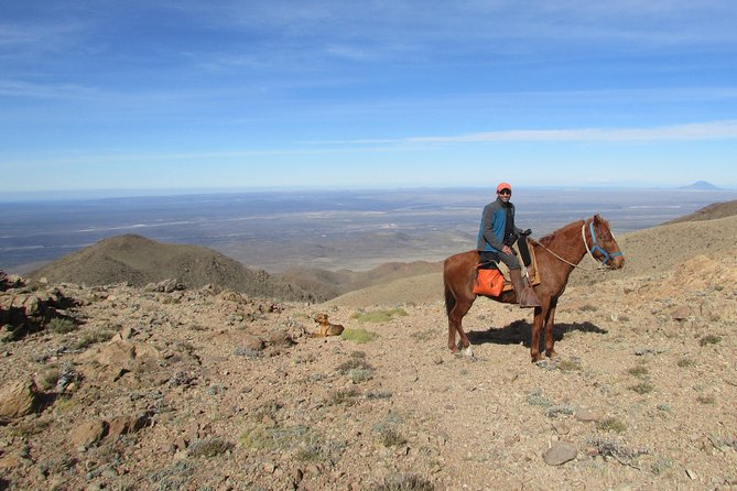 Horseback expedition to The Andes, 3 days photo 2