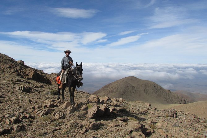 Horseback expedition to The Andes, 3 days photo 4
