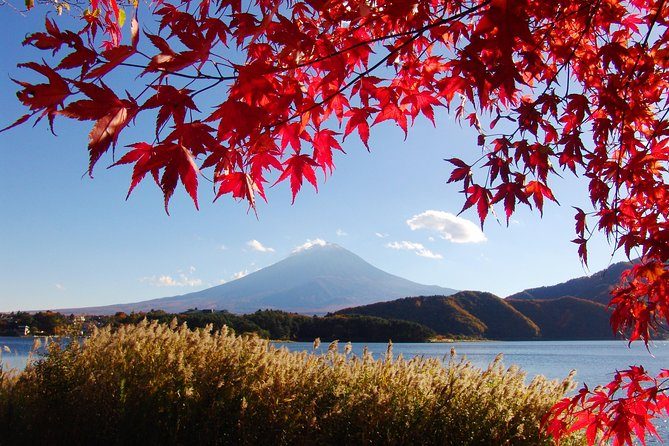 Tagesausflug Tokio Mount Fuji