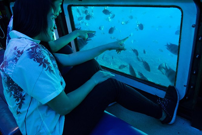 West Marine Underwater Sightseeing Cruise