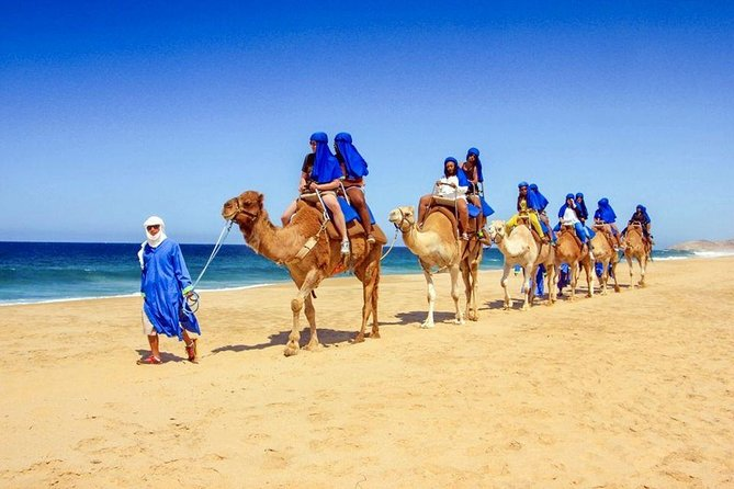 Blue Hole National Park by Bus - Sharm El Sheikh photo 18
