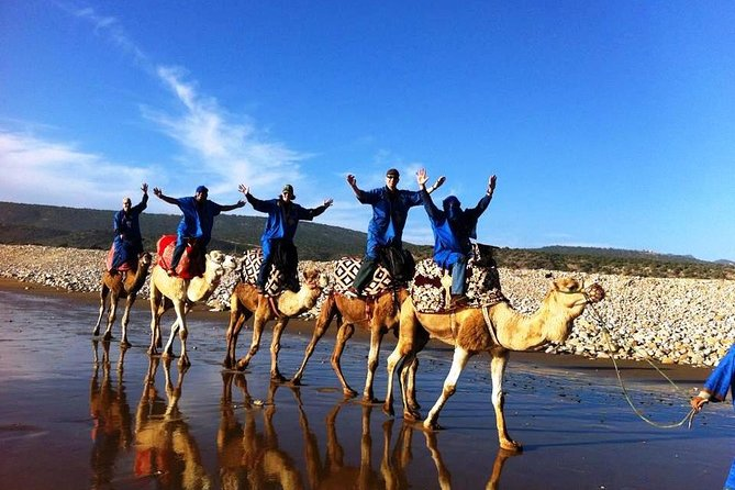 Agadir 03 hours camel riding with dinner - BBQ -
