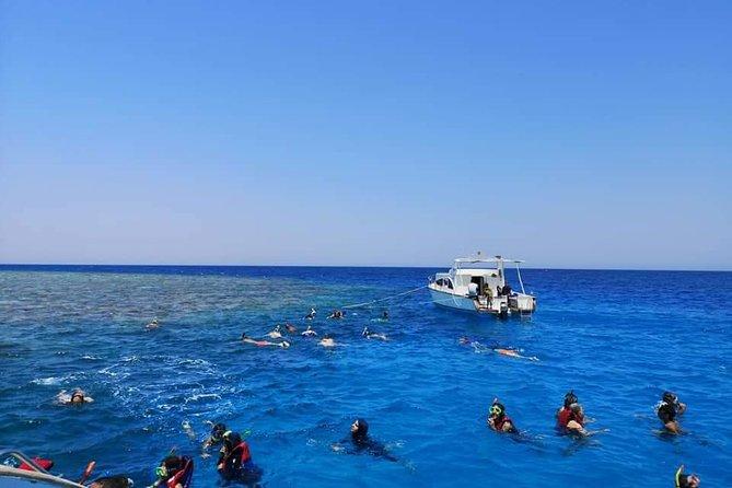 Super Utopia Island_ The Most Rated Sea Trip