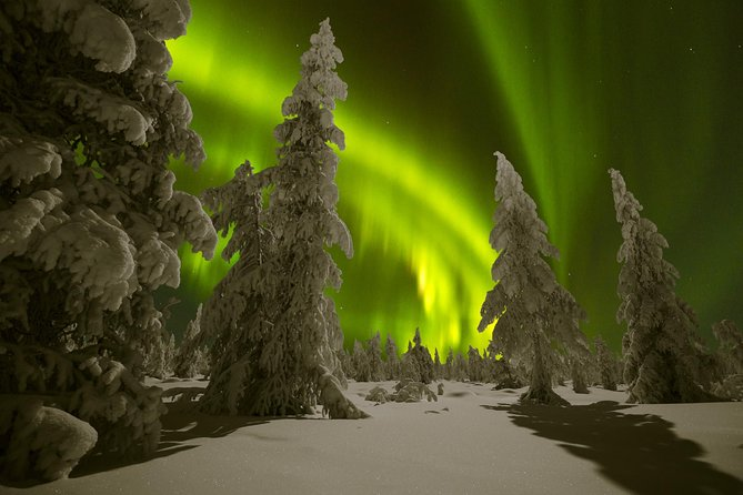 Northern Lights Snowmobile Safari from Rovaniemi