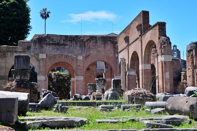 Fast Track: Colosseum, Palatine Hill and Roman Forum Tour
