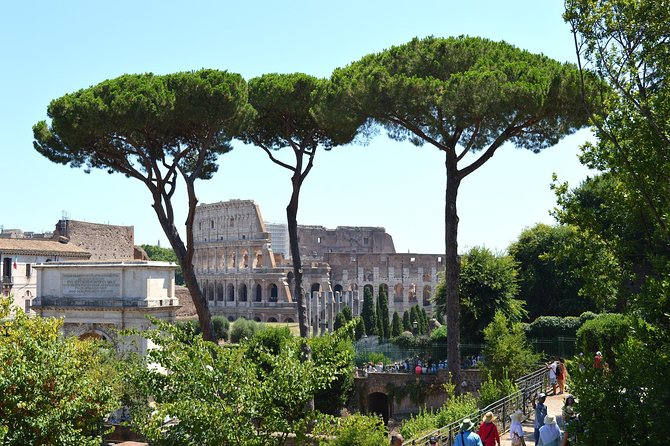 VISIT ROME: COLOSSEUM Guided Experience Completed by Palatine Hill & Roman Forum