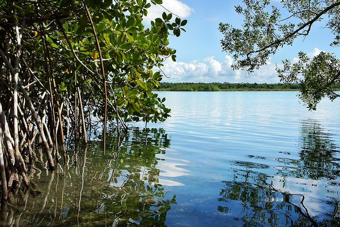 1 Day Bacalar Seven Color Lagoon Adventure (transportation + Lunch Included) photo 11