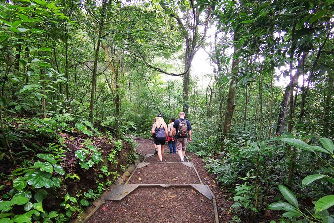 Hiking to the Rincon de la Vieja Volcano National Park Private Tour