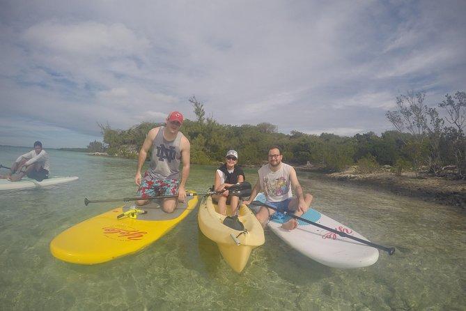 Kayak and Paddleboard Rentals