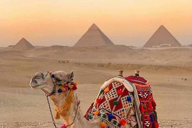 Airport Layover Tour to Pyramids & Museum