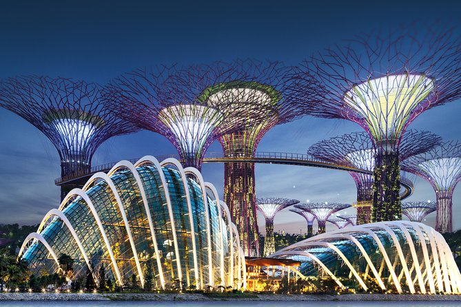 Gardens by the Bay in Singapore with 1-Way Transfer