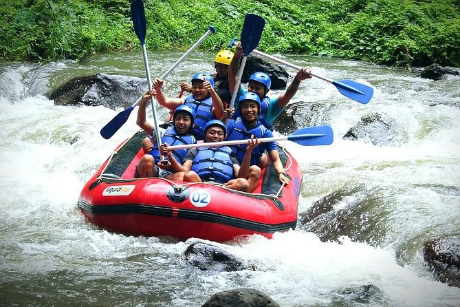 White Water Rafting - Ayung River