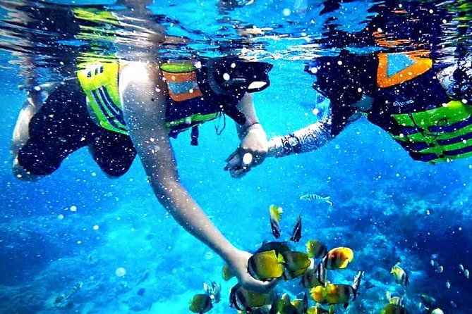 Blue Lagoon Paradise Snorkeling Tour