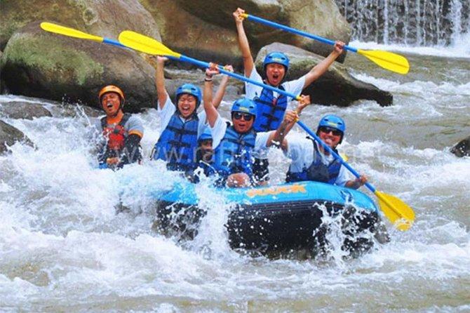 Amazing 5 Star Mason Adventure Rafting-Ubud palace & Market With Private Tours