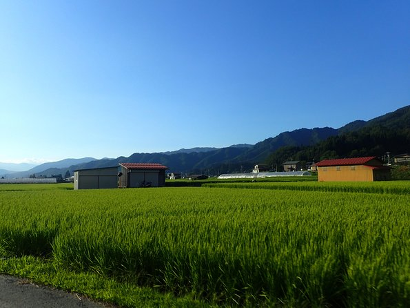 Morning Cycling Tour in Hida-Furukawa photo 14