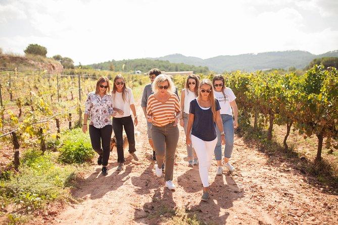 Catalan Flavors: Wine & Gastronomy