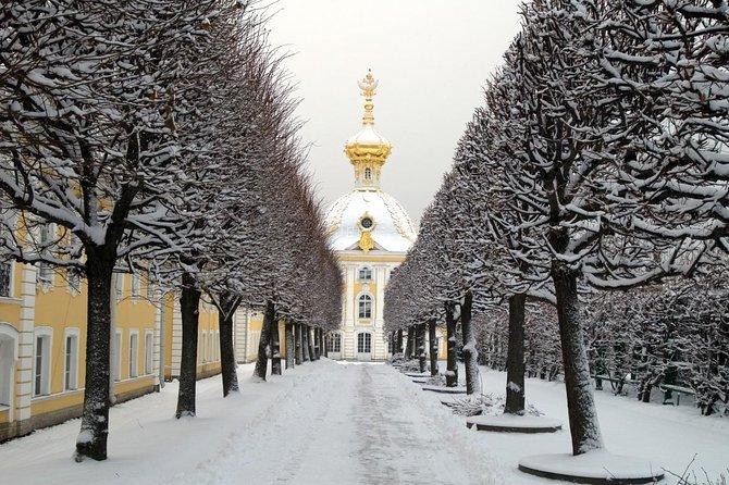 Winter Holidays in St Petersburg with Hermitage & Peterhof