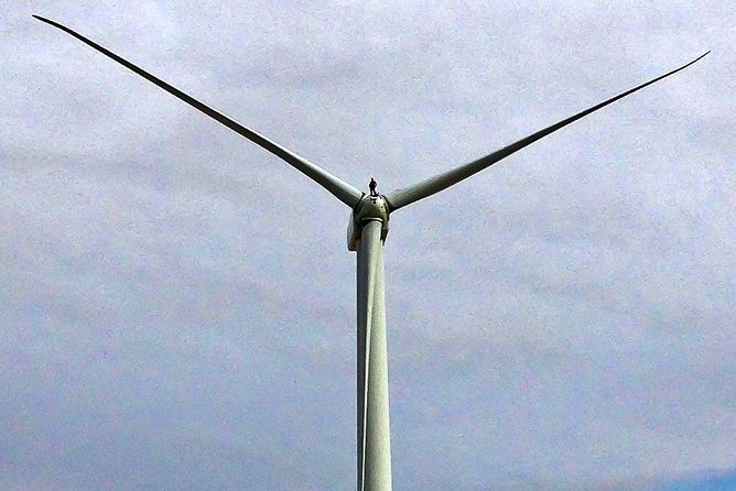 Palm Springs Windmill Tours is the only behind the fence historical eco bus tour photo 2