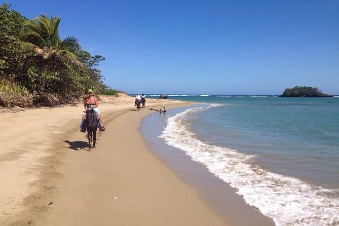 Puerto Plata: Beach Half Day Horseback Riding