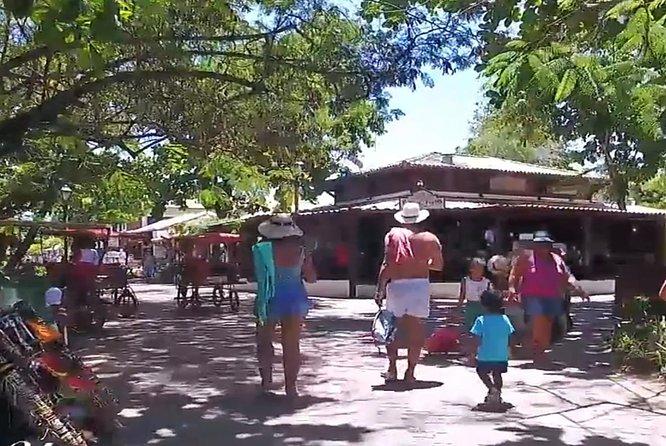 Tour to Praia do Forte and Guarajuba